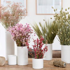 Le Comptoircom Accessoires De Décoration Florale Pour Professionnels