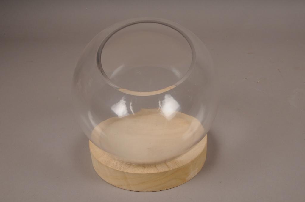 A000T0 Cloche boule verre plateau bois D19cm H23cm