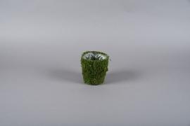 A000T9 Moss pot D12.5cm H13.5cm