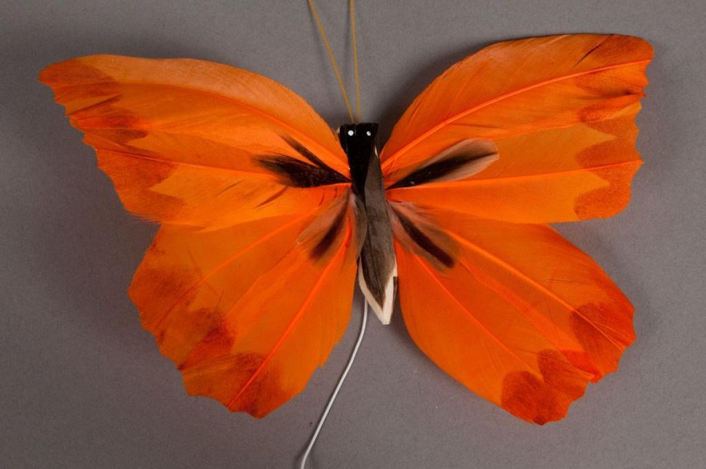 A001E9 Boîte de 12 pics papillons oranges 20cm