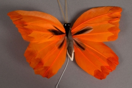 A001E9 Box 12 picks butterflies orange 20cm