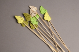 A002PH Pack of 10 picks of wooden fern H32cm