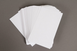 A004OI Pack of 100 index cards