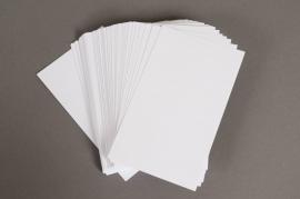 A004OI Paquet de 100 fiches bristol