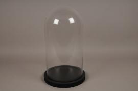 A004T0 Cloche verre plateau bois noir D29cm H50cm