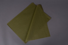 A005AS Paquet de 520 feuilles papier de soie vert mousse 50x75cm