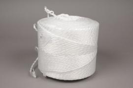 A005L5 elote de ficelle synthétique blanche 400m