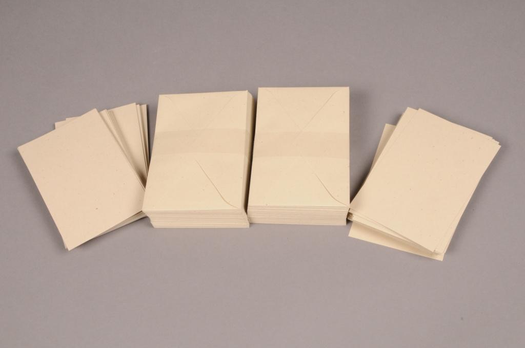A006AS Paquet de 100 cartes et 100 enveloppes