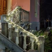 A006R5 Luminous warm white LED branches L300cm