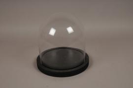 A006T0 Cloche verre plateau bois noir D29cm H29cm