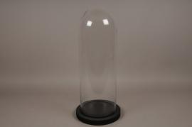A007T0 Cloche verre plateau bois noir D26cm H63cm