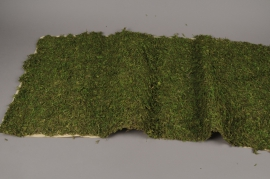 A007T9 Self-adhesive moss sheet 50cm x 100cm