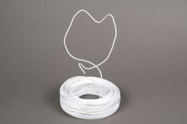 A008MG Rouleau de fil en aluminium blanc 2mm 500gr 60m