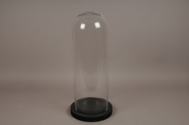 A008T0 Glass bell with wooden tray D24cm H58cm