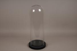 A008T0 Cloche verre plateau bois noir D24cm H58cm