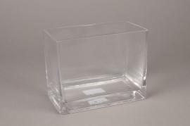 A009I0 Jardinière en verre 18x10cm H14cm