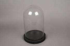 A009T0 Cloche verre plateau bois noir D24cm H37.5cm