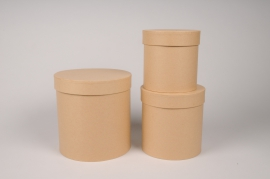 A010O1 Set of 3 natural cardboard box D18cm H18cm