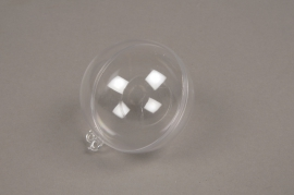 A010OZ Box of 50 openable clear balls D6cm