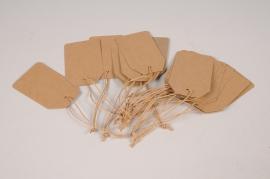 A010TG Paquet de 100 étiquettes kraft naturel 5.5 x 9cm
