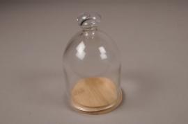 A011T0 Cloche verre plateau bois D9cm H15cm
