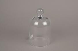 A015G9 Cloche en verre D11.5cm H19.5cm
