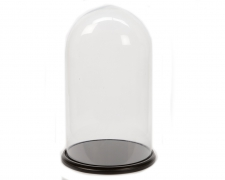 A015KI Glass bell with wooden tray D35cm H62cm