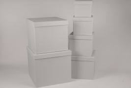 A015O1 Set de 6 boîtes en carton gris 28x28cm H28cm
