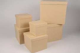 A016O1 Set de 6 boîtes en carton naturel 28x28cm H28cm