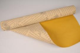 A018N4 Kraft paper roll 70cmx50m