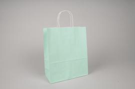 A019AS Paquet de 25 sacs kraft vert d'eau 22cm x 10cm H27cm