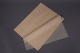 A021AS Ream of 480 tissue paper sheets ivory white 50x75cm