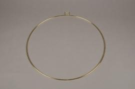 A023L7 Gold metal hoop ornament D40cm
