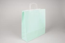 A024AS Paquet de 25 sacs kraft vert d'eau 36cm x 12cm H41cm