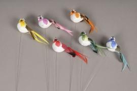 A024E9 Box of 12 birds on picks H22cm