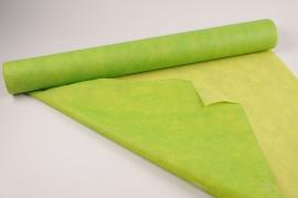 A026RB Rouleau non tissé vert 80cmx20m