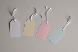 A029AS Pack of 100 color labels 4.5cm x 8.5cm