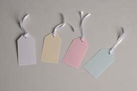 A029AS Paquet de 100 étiquettes de couleur 4.5cm x 8.5cm