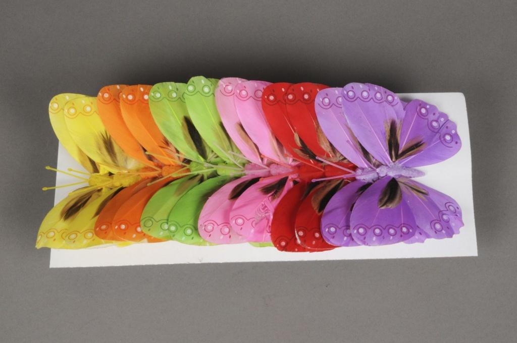 A029E9 Boîte de 12 pics papillons 12cm