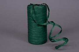 A029ZR Roll of synthetic raffia vert 200m