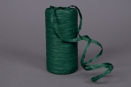A029ZR Roll of synthetic raffia vert 200m