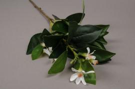 a034nn Branche de fleurs d'oranger artificiel H58cm