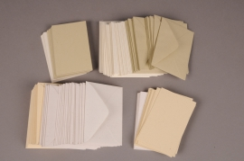 A046AS Pack of 100 index cards with envelope