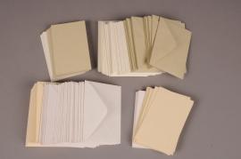 A046AS Paquet de 100 fiches bristol assorties