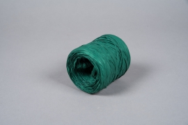 A047ZR Green raffia spool 200m