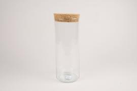 A048NH Glass terrarium D12m H30cm