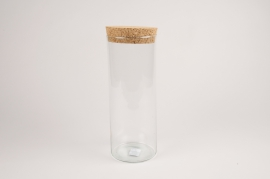 A048NH Terrarium en verre D12cm H30cm