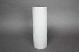 A051PS Glass cylindrical vase white D10 H30cm