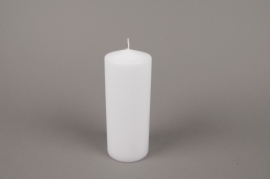 A053E2 Box of 6 candles white cylinder D8cm H20cm
