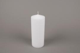 A053E2 Boîte de 6 bougies cylindre blanc D8cm H20cm
